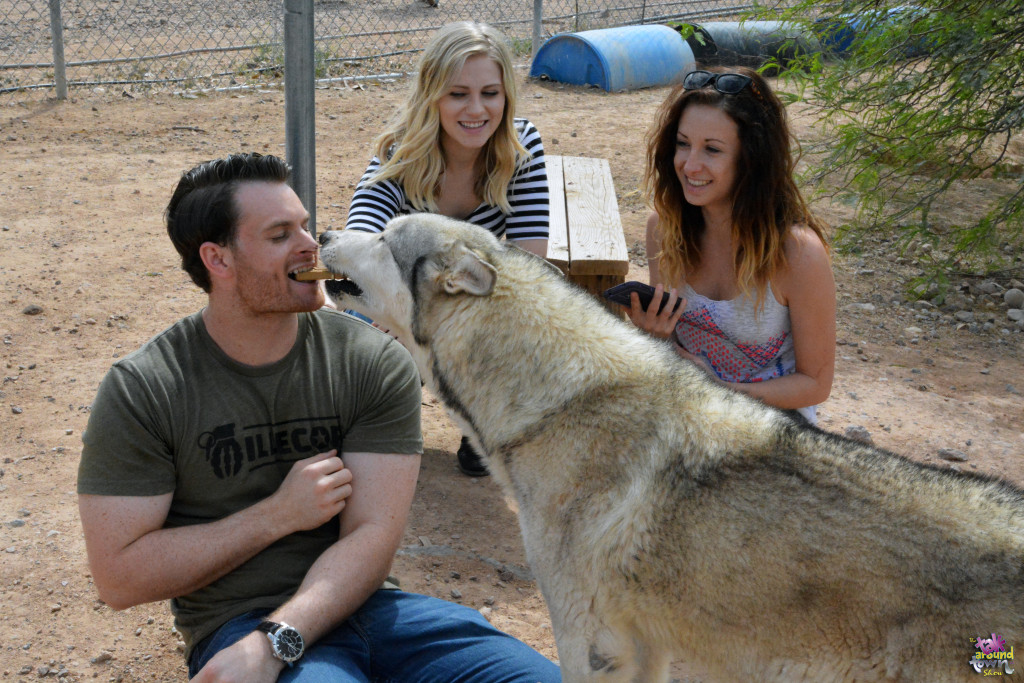Fundraiser for Eagle Tail Mountain Wolf Sanctuary